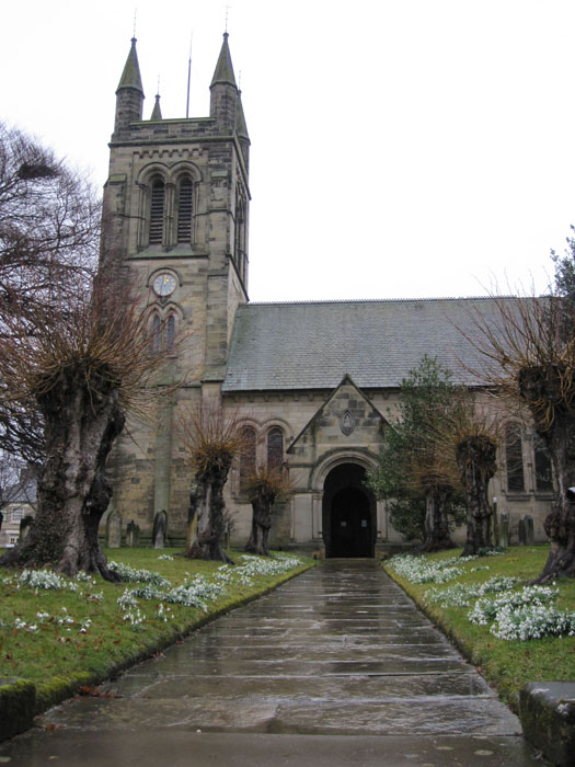 All Saints Catholic Church in Helmsley - check out the dainty white flowers and the funky trees