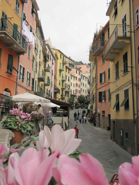 Delightful main street in Riomaggiore